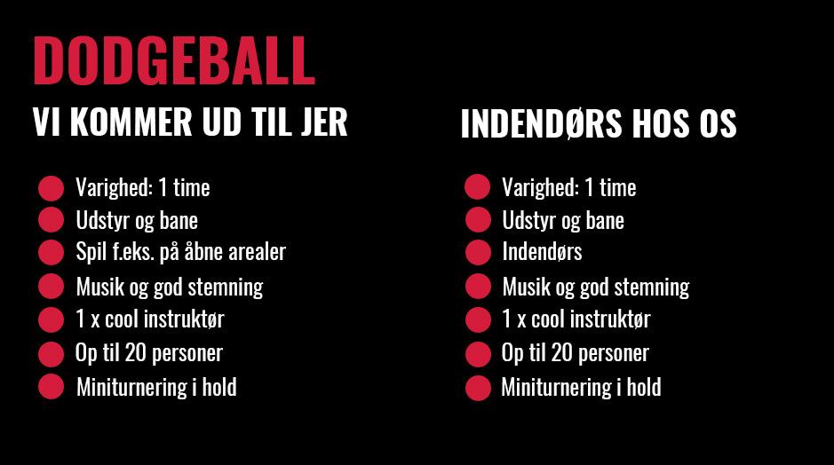 dodgeball priser privat